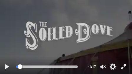 VdV Soiled Dove